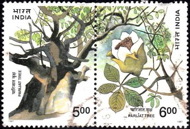 parijat tree in stamp